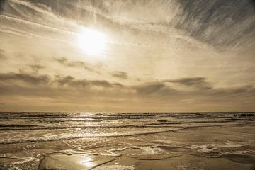 Strandspülungen von anne droogsma