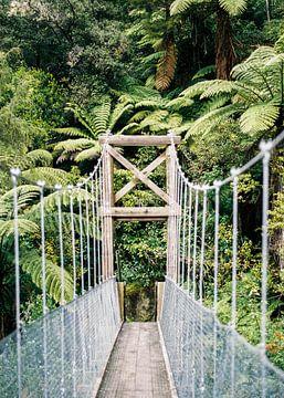 Hangbrug in het Abel Tasman nationaal park | Nieuw Zeeland van Raisa Zwart