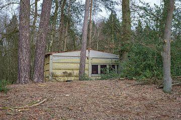 Beton in het bos van Johan Vanbockryck