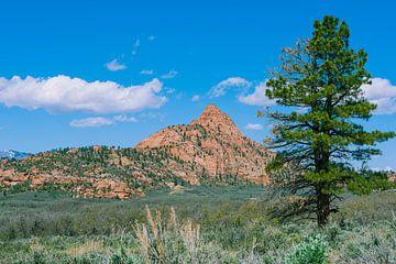Utah Landschaft von Nicolas Ros