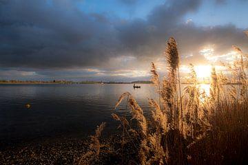 Vissersboot met riet von Moetwil en van Dijk - Fotografie