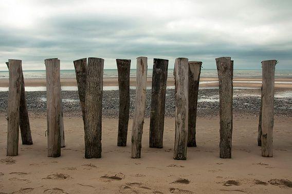 Strand van Sonja Pixels