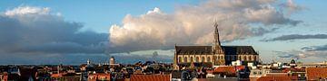 Panorama van Haarlem met grote kerk - kleur