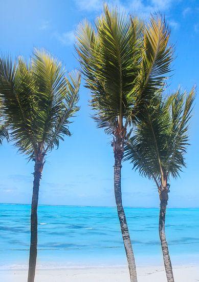 Swinging palm trees in the wind van Laura Sanchez