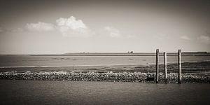 North Sea Coast / East Frisia (Black and White)