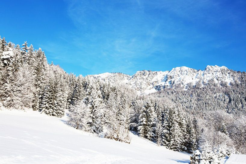 Paysage de neige sur Frank Herrmann