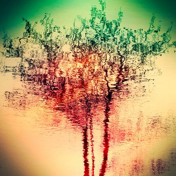 Summer reflection van Carla Vermeend