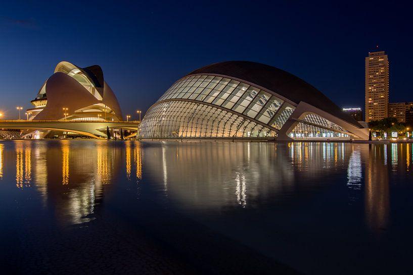 City of Arts and Sciences (Valencia)  van Bert Meijer