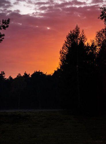 Lucht in de fik: zonsondergang in de Lage Vuursche