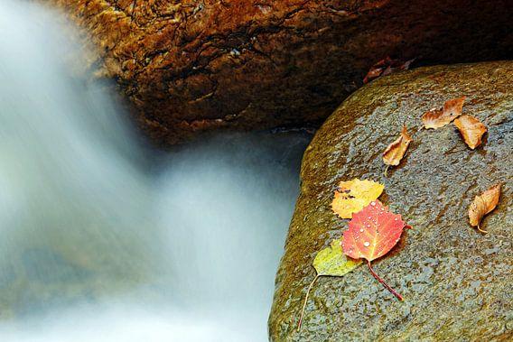 Vermont Waterfall van Borg Enders