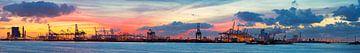 Rotterdam Hafenpanorama  von Anton de Zeeuw