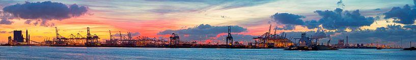 Haven Rotterdam panorama van Anton de Zeeuw