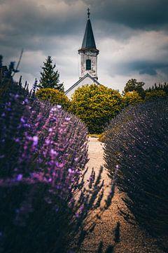 Kirche in Ungarn Balaton mit lawendelfeld von Fotos by Jan Wehnert
