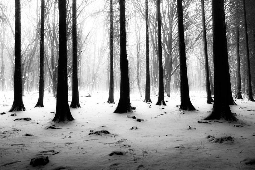 Besneeuwd bos van Niels Barto