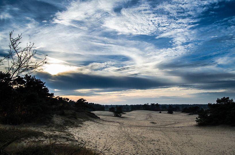 Zandvlakte van Hulshorsterzand van Ricardo Bouman
