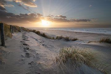 Strandwandeling van Koen Sachse