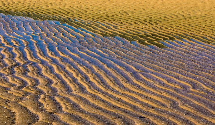 1677 Beach van Adrien Hendrickx