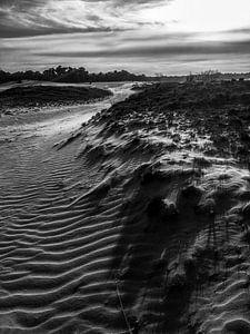 Dune von Björn Massuger