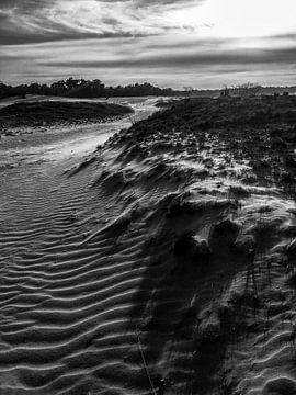 Dune van
