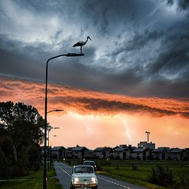Kalmte voor de storm van Chris Koekenberg