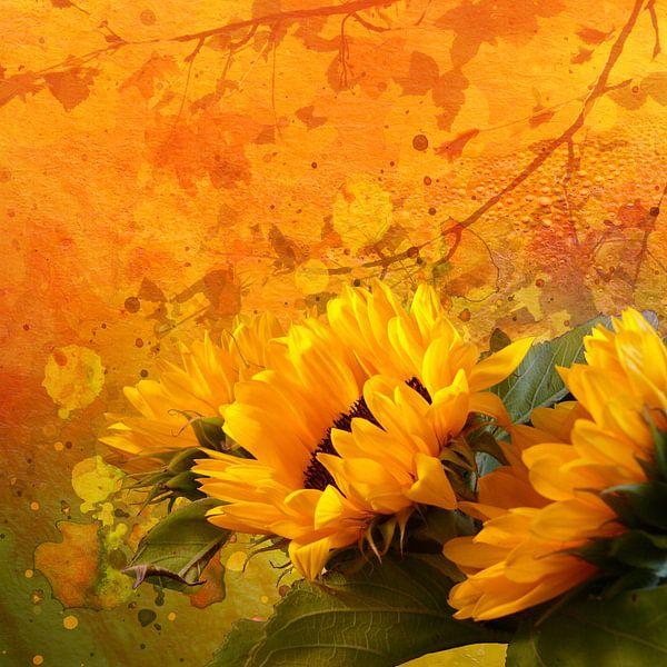 Sonnenblumen von Andreas Wemmje