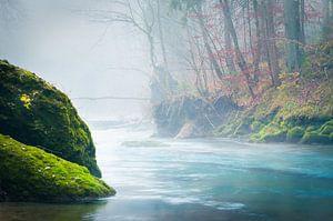 Fall colors at a river van Thomas Matzl
