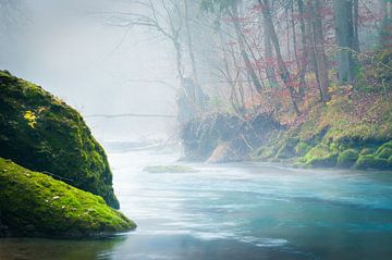 Fall colors at a river sur Thomas Matzl