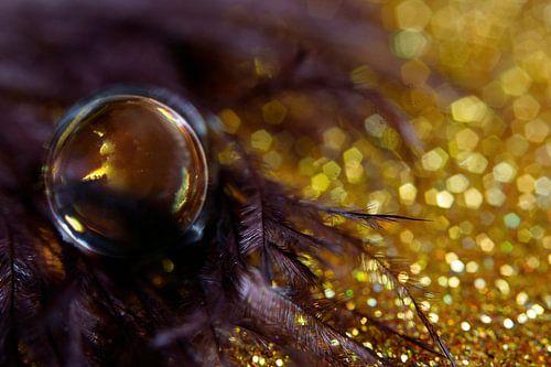 Paars en goud in een druppel gevangen. von Kvinne Fotografie