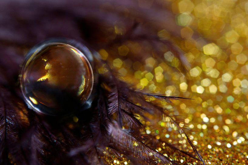 Paars en goud in een druppel gevangen. van Kvinne Fotografie