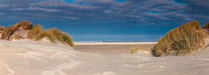 Panorama duin en strand te Terschelling