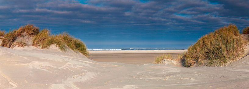 Panorama duin en strand van Anton de Zeeuw