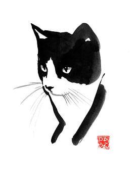 chat portrait sur philippe imbert