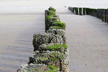 Paaltjes op het strand van Schouwen-Duivenland van Nicolette Vermeulen