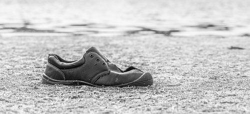 Floating shoe van