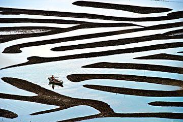 Labyrint, Lina Gunawan van 1x