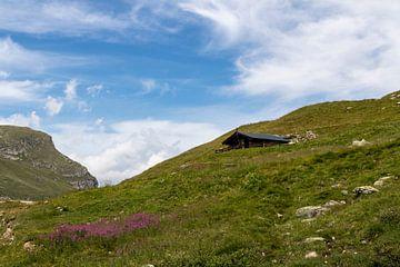 Cabane de montagne suisse