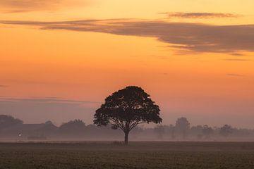 Het Friese platteland van Goffe Jensma