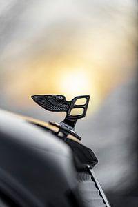 Bentley zon van Otof Fotografie