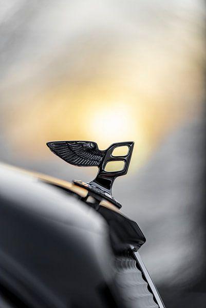 Bentley-Sonne von Otof Fotografie