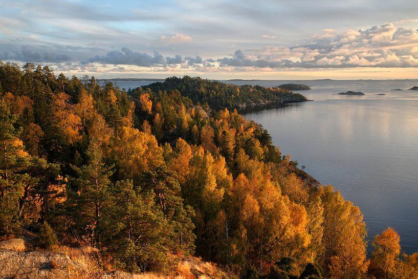 Zweedse herfst van Mark Leeman