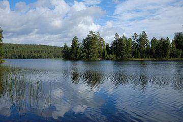 Zweden 265 van Geertjan Plooijer