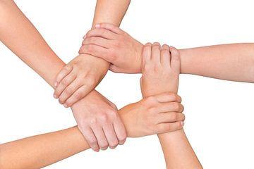 Vijf armen van kinderen houden elkaar vast bij de polsen op witt van Ben Schonewille