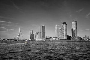 Panorama van de stad Rotterdam en de Erasmusbrug over de Nieuwe Maas