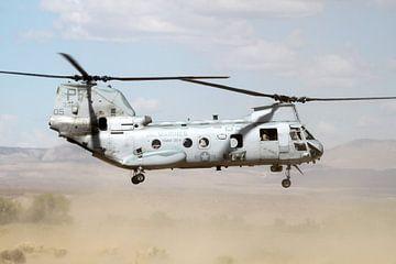 Boeing CH-46 Sea Knight stijgt op in woestijn van Ramon Berk