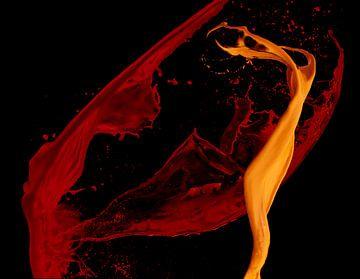 kleurendans van Annemiek Tamminga