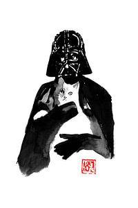 dunkler Vader und seine Katze