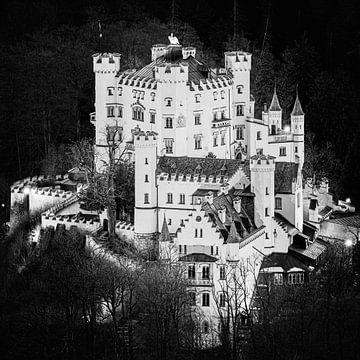 Schloss Hohenschwangau in schwarz-weiß von Henk Meijer Photography