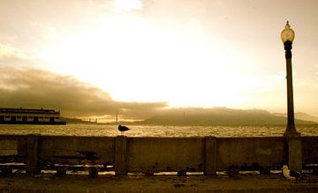 Golden Gate 2, San Francisco, California van Samantha Phung