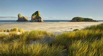 Wharariki Beach van Rainer Mirau