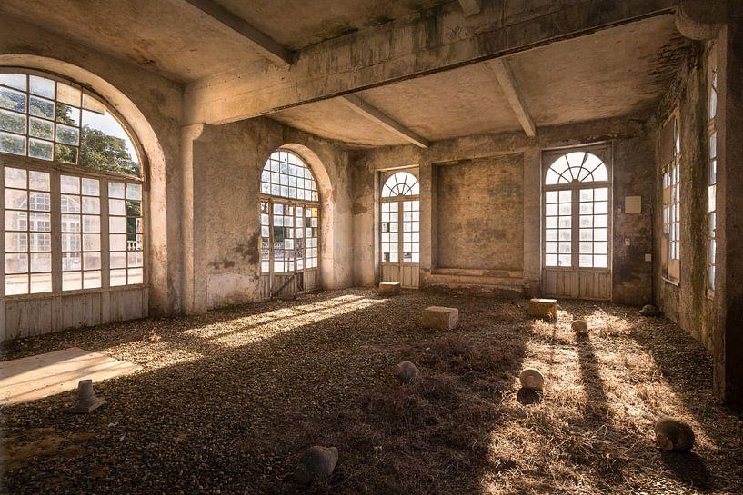 Verlaten Serre in Verval. van Roman Robroek